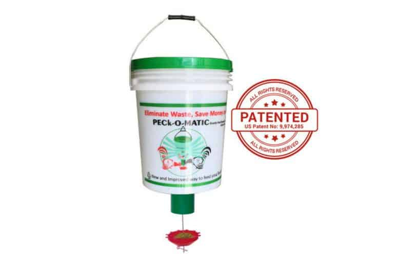 PECk-O-Matic Chicken Feeder